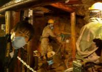 足尾銅山鉱毒事件